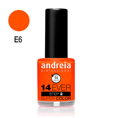 ANDREIA VERNIZ 14EVER COLOR LOOK E6