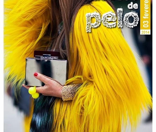 03-FEV_-CASACOS-DE-PELO_data
