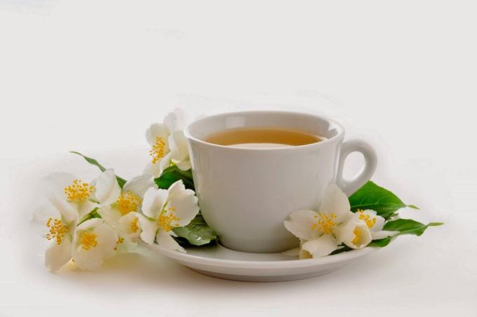 remedio-de-angelica-erva-doce-camomila-e-hortela-para-a-azia1-1024x680